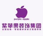 河北紫苹果装饰